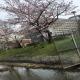 小菅の東京拘置所外周